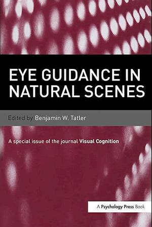 Bog, paperback Eye Guidance in Natural Scenes af Benjamin W. Tatler