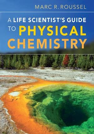 Life Scientist's Guide to Physical Chemistry af Roussel