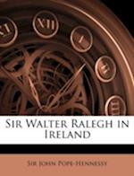Sir Walter Ralegh in Ireland af John Wyndham Pope-Hennessy, John Pope-Hennessy