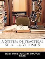 A System of Practical Surgery, Volume 5 af Paul Von Bruns, Ernst Von Bergmann