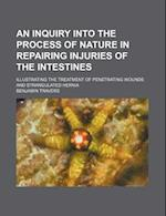 An  Inquiry Into the Process of Nature in Repairing Injuries of the Intestines; Illustrating the Treatment of Penetrating Wounds and Strangulated Hern af Benjamin Travers