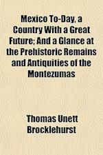 Mexico To-Day, a Country with a Great Future; And a Glance at the Prehistoric Remains and Antiquities of the Montezumas af Thomas Unett Brocklehurst
