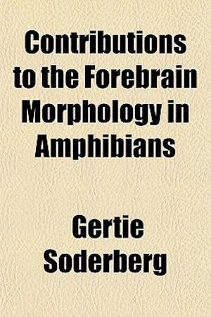 Contributions to the Forebrain Morphology in Amphibians af Gertie Soderberg, Gertie Sderberg