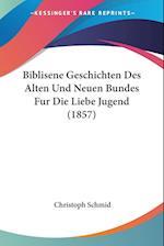 Biblisene Geschichten Des Alten Und Neuen Bundes Fur Die Liebe Jugend (1857) af Christoph Schmid