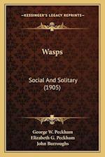 Wasps af George W. Peckham, Elizabeth G. Peckham