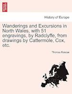 Wanderings and Excursions in North Wales, with 51 Engravings, by Radclyffe, from Drawings by Cattermole, Cox, Etc. af Thomas Roscoe