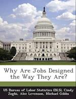 Why Are Jobs Designed the Way They Are? af Alec Levenson, Cindy Zoghi