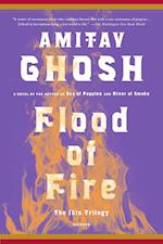 Flood of Fire (Ibis Trilogy)