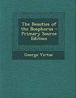 The Beauties of the Bosphorus af George Virtue