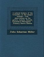 A Natural History of the Crinoidea, or Lily-Shaped Animals af John Sebastian Miller