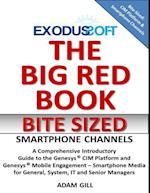 Big Red Book - Bite Sized - Mobile Engagement af Adam Gill