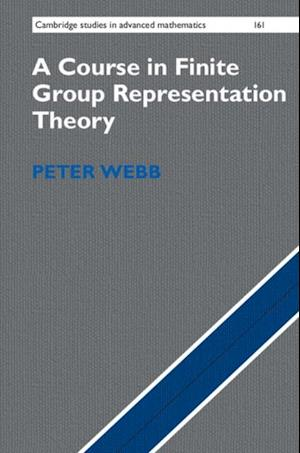 Course in Finite Group Representation Theory af Peter Webb