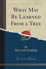 What May Be Learned from a Tree (Classic Reprint)