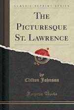 The Picturesque St. Lawrence (Classic Reprint)