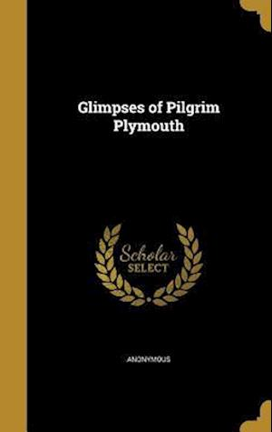 Bog, hardback Glimpses of Pilgrim Plymouth