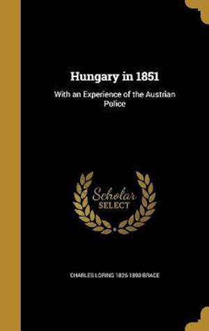 Hungary in 1851 af Charles Loring 1826-1890 Brace