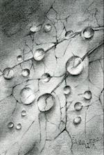 Fissures af Saraliza Anzaldua