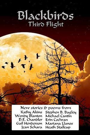 Bog, paperback Blackbirds Third Flight af Stephen B. Bagley