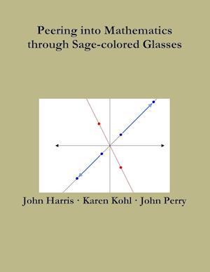 Bog, paperback Peering Into Mathematics Through Sage-Colored Glasses af John Harris, John Perry, Karen Kohl