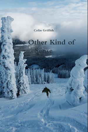 Bog, paperback The Other Kind of Sense af Colin Griffith