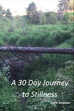 A 30 Day Journey to Stillness