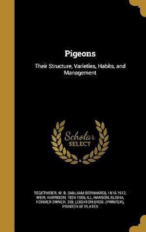 Bog, hardback Pigeons