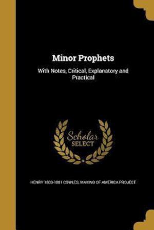 Bog, paperback Minor Prophets af Henry 1803-1881 Cowles