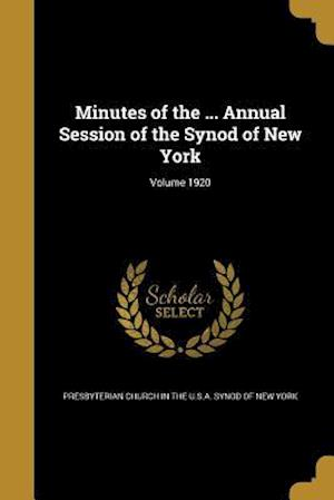 Bog, paperback Minutes of the ... Annual Session of the Synod of New York; Volume 1920