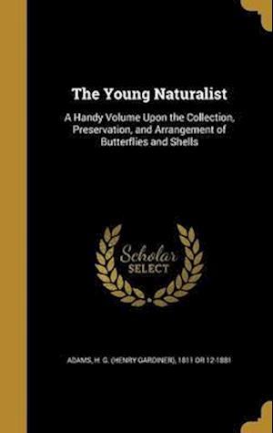 Bog, hardback The Young Naturalist
