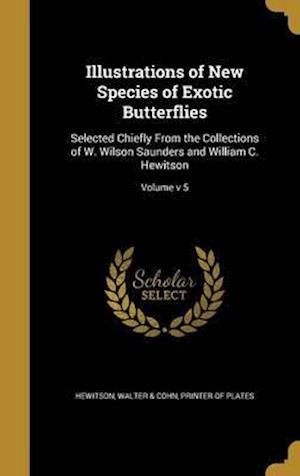 Bog, hardback Illustrations of New Species of Exotic Butterflies