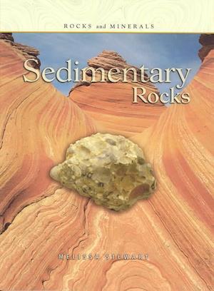 Bog, paperback Sedimentary Rocks af Melissa Stewart
