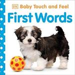 Baby Touch and Feel: First Words (Baby Touch and Feel)