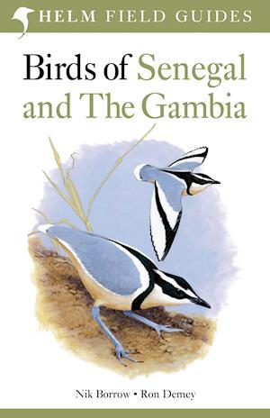 Birds of Senegal and The Gambia af Tony Disley, Ron Demey, Nik Borrow