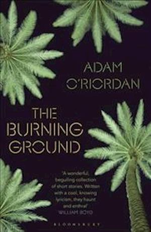 Bog, hardback The Burning Ground af Adam O'Riordan