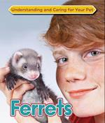 Ferrets (Understanding and Caring for Your Pet)