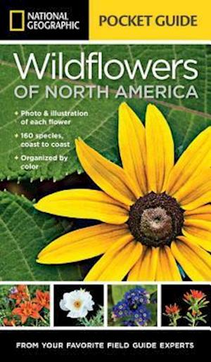 National Geographic Pocket Guide to Wildflowers of North America af Catherine Herbert Howell