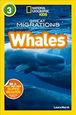 Whales af National Geographic Kids