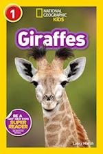 Giraffes (Readers)