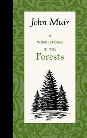 A Wind-Storm in the Forests af John Muir