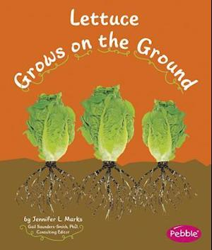 Lettuce Grows on the Ground af Gail Saunders Smith, Mari Schuh