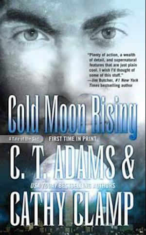 Cold Moon Rising af Cathy Clamp