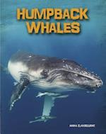 Humpback Whales (Heinemann Infosearch)