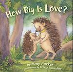 How Big Is Love? (Faith Hope Love)