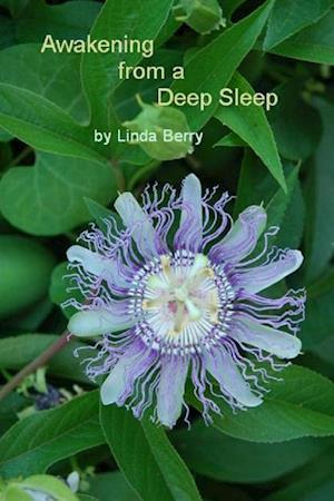 Bog, paperback Awakening from a Deep Sleep af Linda Berry