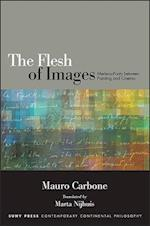 The Flesh of Images (Suny Series in Contemporary Continental Philosophy)