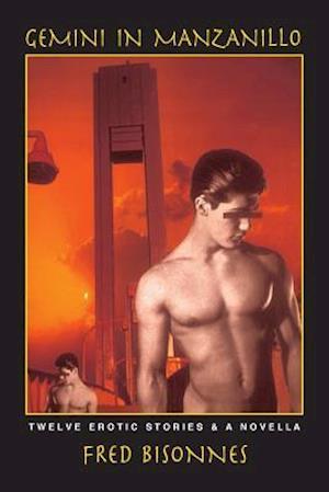 Gemini in Manzanillo af Fred Bisonnes