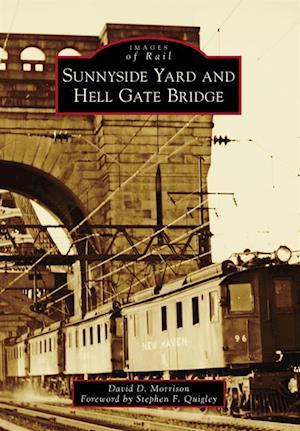 Sunnyside Yard and Hell Gate Bridge af David D. Morrison