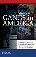 Introduction to Gangs in America af Richard Tewksbury, George Higgins, George E Higgins