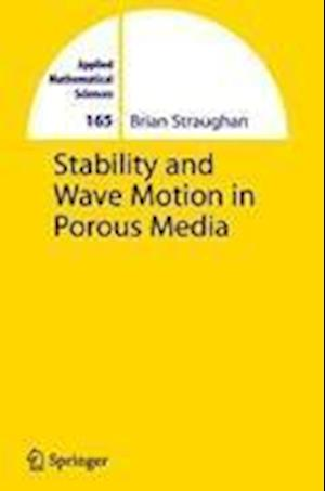 Stability and Wave Motion in Porous Media af Brian Straughan