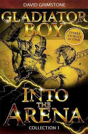 Into the Arena af David Grimstone